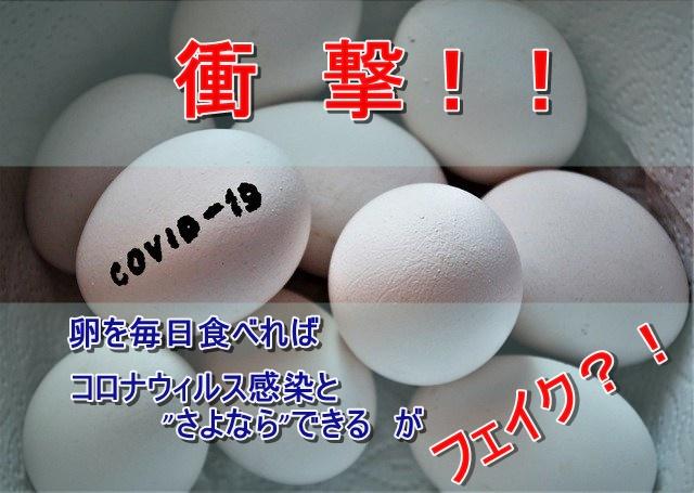 卵フェイクニュース